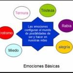 Emocion-300x259